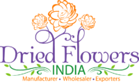 Wholesale Florist Logo