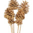 Pine Cone Bleach 6pcs Bunch on Stick - Bleached Pine Cone