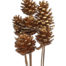 Pine Cone Gold 6 pcs bunch on Stem - Gold Pone Cone