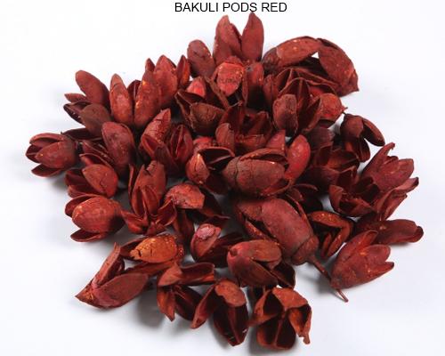 Bakuli Pods Red Potpourri Flower Suppliers Wholesale